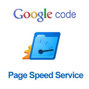 google-page-speed-service