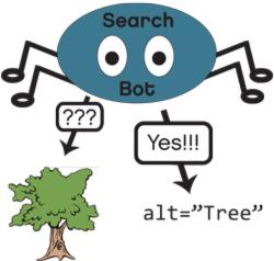 search-bot-alt-text