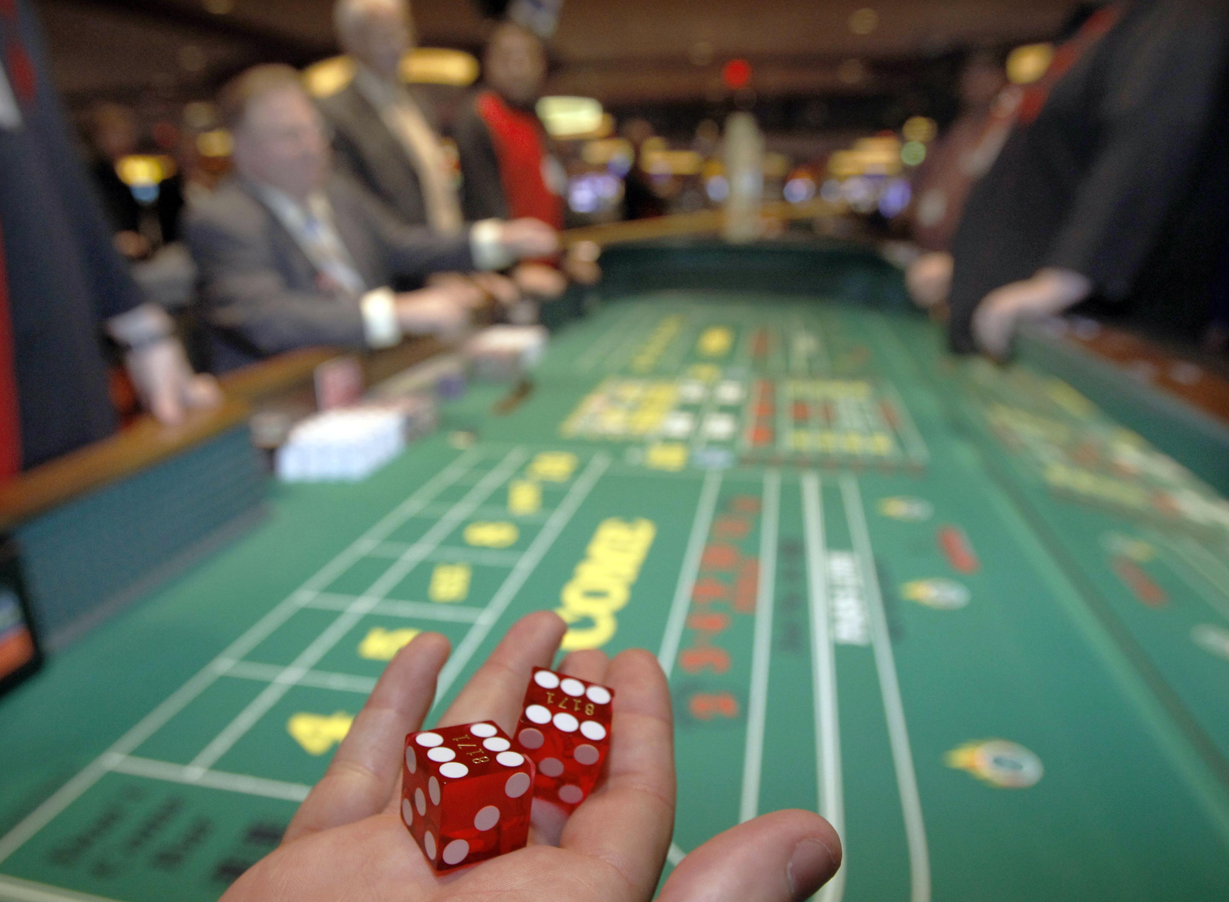cooclcat casino